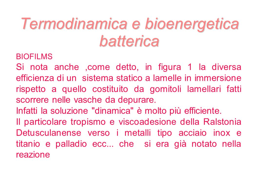 Termodinamica e bioenergetica batterica BIOFILMS Si nota anche,come detto, in figura 1 la diversa efficienza di un sistema statico a lamelle in immersione rispetto a quello costituito da gomitoli lamellari fatti scorrere nelle vasche da depurare.