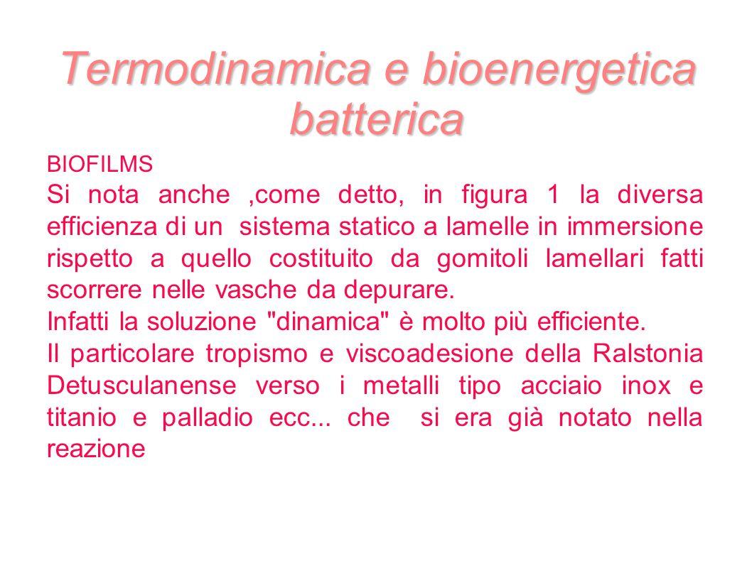 Termodinamica e bioenergetica batterica BIOFILMS Si nota anche,come detto, in figura 1 la diversa efficienza di un sistema statico a lamelle in immers
