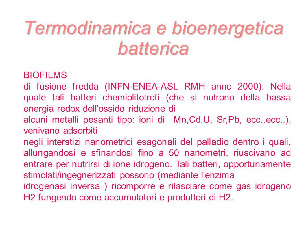 Termodinamica e bioenergetica batterica BIOFILMS di fusione fredda (INFN-ENEA-ASL RMH anno 2000). Nella quale tali batteri chemiolitotrofi (che si nut