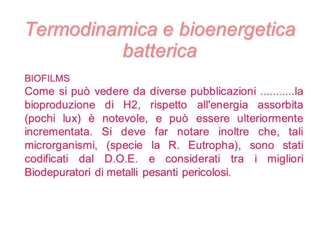 Termodinamica e bioenergetica batterica BIOFILMS Come si può vedere da diverse pubblicazioni...........la bioproduzione di H2, rispetto all'energia as