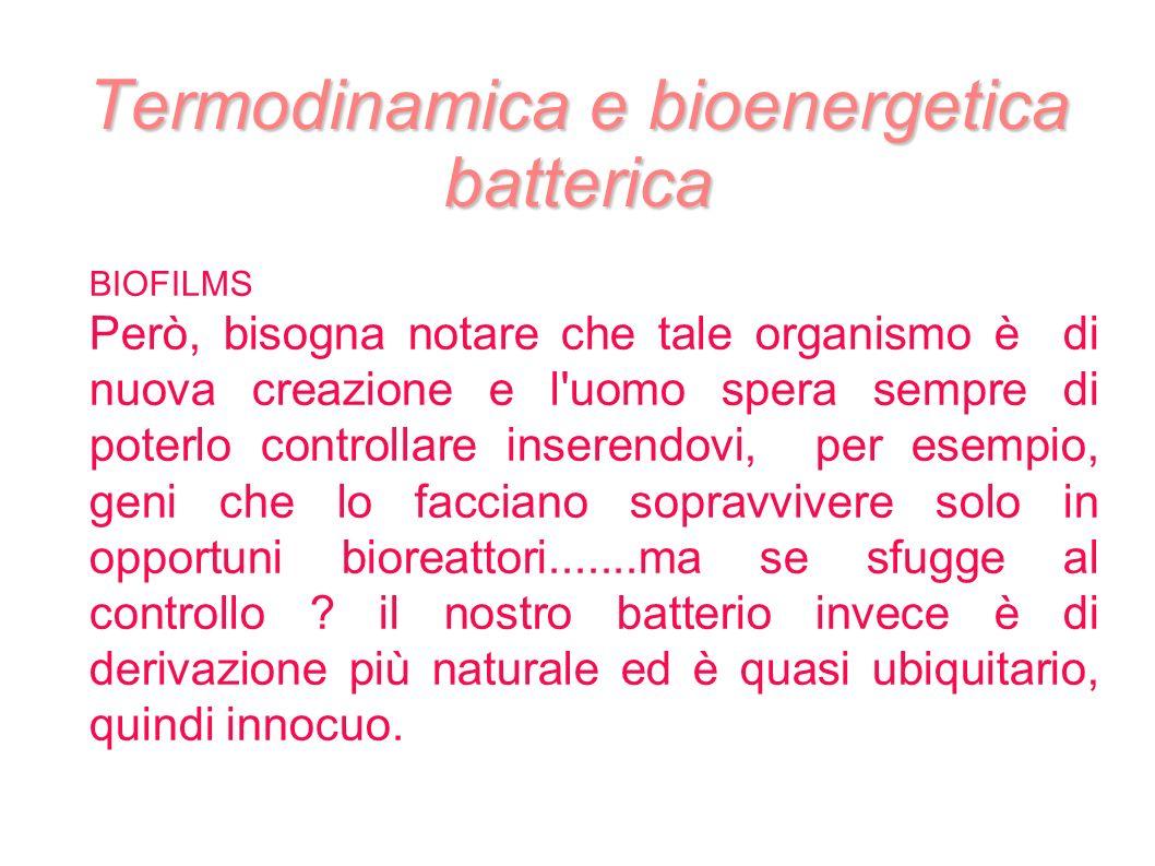 Termodinamica e bioenergetica batterica BIOFILMS Però, bisogna notare che tale organismo è di nuova creazione e l'uomo spera sempre di poterlo control