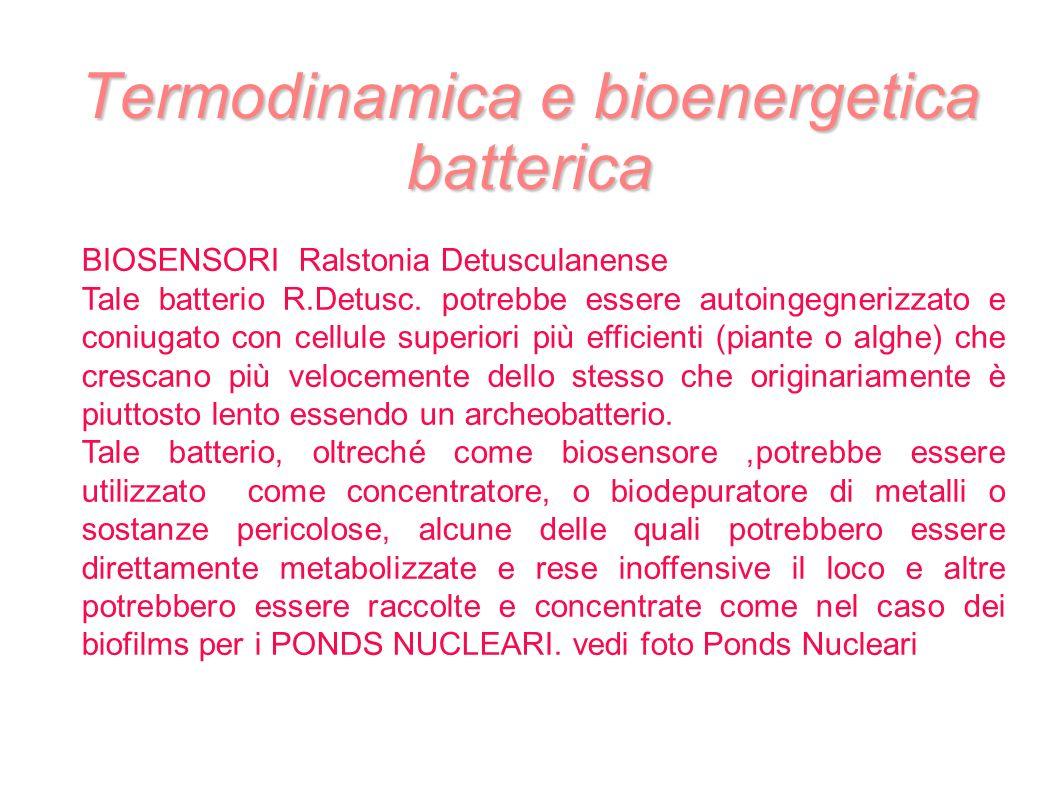 Termodinamica e bioenergetica batterica BIOSENSORI Ralstonia Detusculanense Tale batterio R.Detusc. potrebbe essere autoingegnerizzato e coniugato con