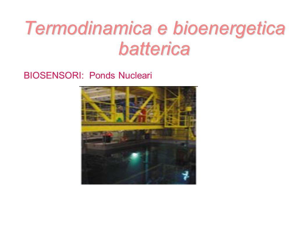 Termodinamica e bioenergetica batterica BIOSENSORI: Ponds Nucleari