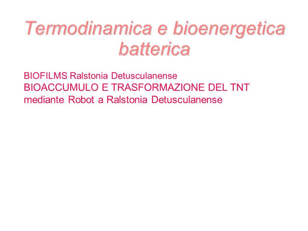 Termodinamica e bioenergetica batterica BIOFILMS Ralstonia Detusculanense BIOACCUMULO E TRASFORMAZIONE DEL TNT mediante Robot a Ralstonia Detusculanen