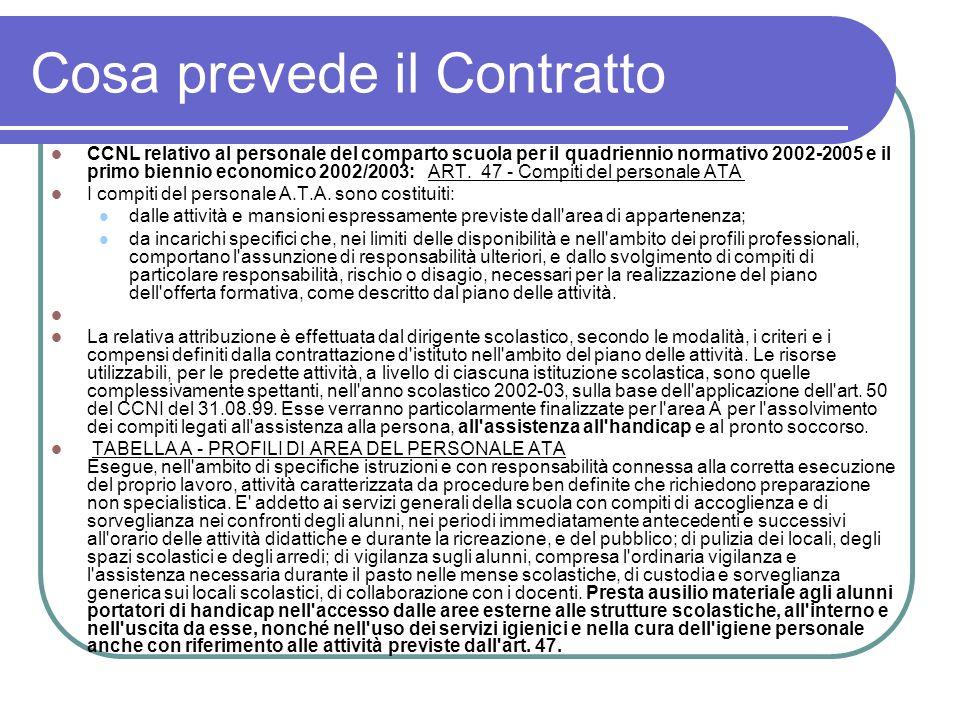 Cosa prevede il Contratto CCNL relativo al personale del comparto scuola per il quadriennio normativo 2002-2005 e il primo biennio economico 2002/2003