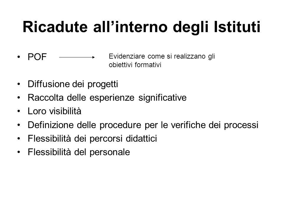 Ricadute allinterno degli Istituti POF Diffusione dei progetti Raccolta delle esperienze significative Loro visibilità Definizione delle procedure per le verifiche dei processi Flessibilità dei percorsi didattici Flessibilità del personale Evidenziare come si realizzano gli obiettivi formativi
