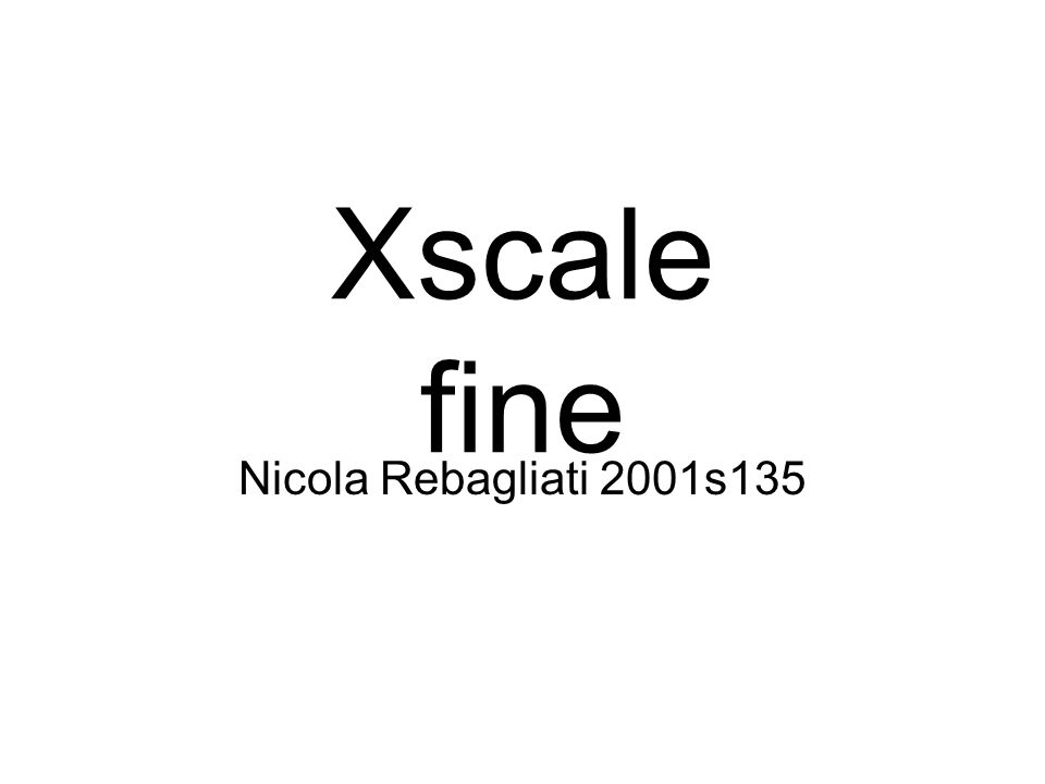 Xscale fine Nicola Rebagliati 2001s135