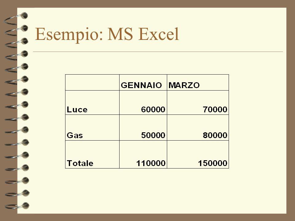 Esempio: MS Excel