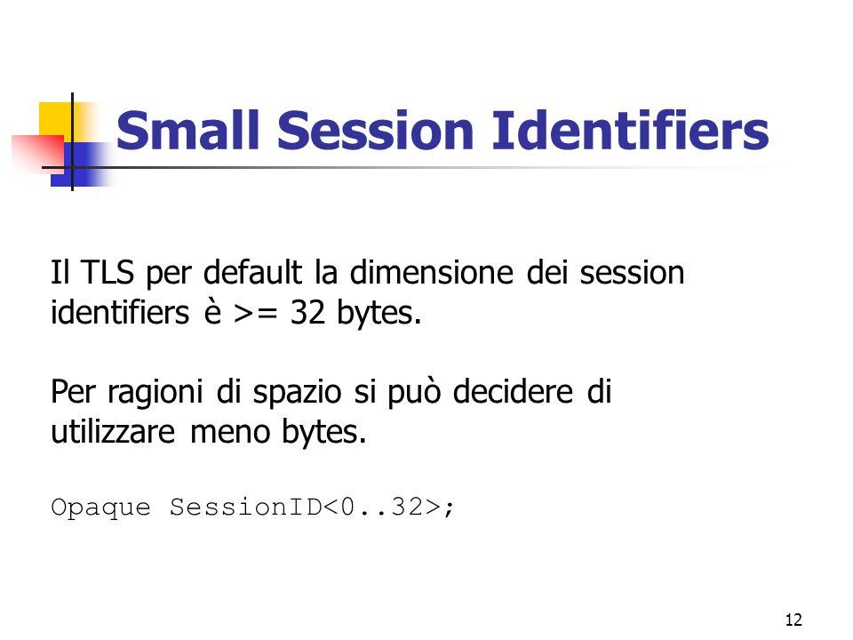 12 Small Session Identifiers Il TLS per default la dimensione dei session identifiers è >= 32 bytes. Per ragioni di spazio si può decidere di utilizza