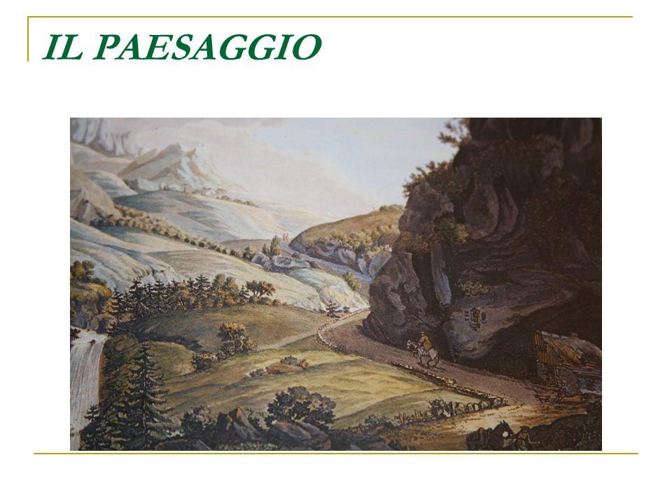 LA NATURA Il paesaggio rappresenta il risultato del secolare intervento delluomo sulla natura.