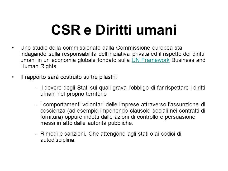 CSR e Diritti umani Uno studio della commissionato dalla Commissione europea sta indagando sulla responsabilità delliniziativa privata ed il rispetto