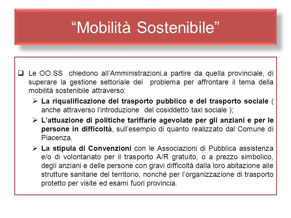 Mobilità Sostenibile Le OO.SS chiedono allAmministrazioni,a partire da quella provinciale, di superare la gestione settoriale del problema per affront