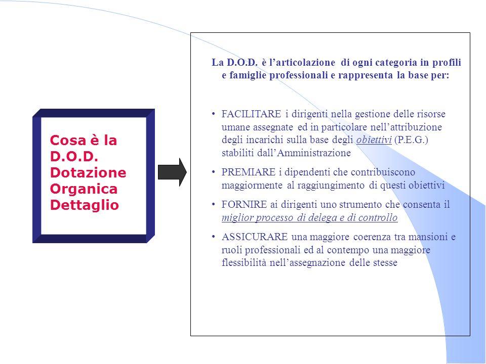 Cosa è la D.O.D. Dotazione Organica Dettaglio La D.O.D. è larticolazione di ogni categoria in profili e famiglie professionali e rappresenta la base p