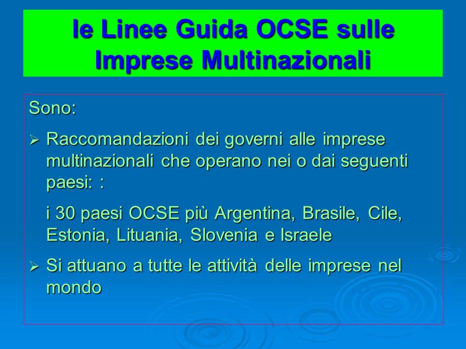 le Linee Guida OCSE sulle Imprese Multinazionali Sono: Raccomandazioni dei governi alle imprese multinazionali che operano nei o dai seguenti paesi: :