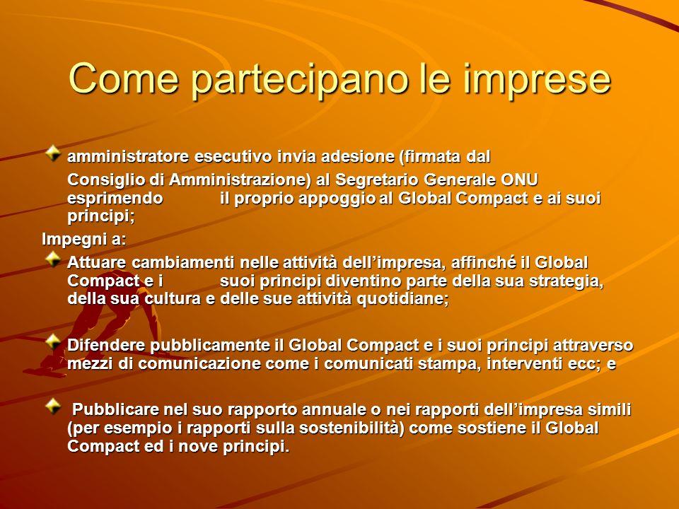 Come partecipano le imprese amministratore esecutivo invia adesione (firmata dal Consiglio di Amministrazione) al Segretario Generale ONU esprimendo i