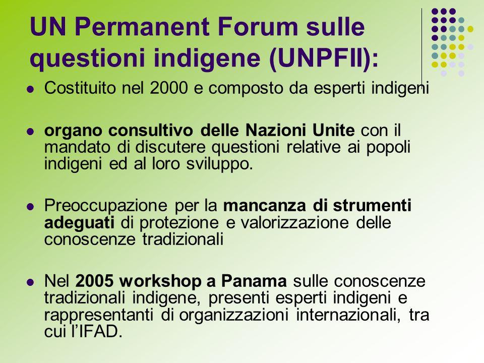 UN Permanent Forum sulle questioni indigene (UNPFII): Costituito nel 2000 e composto da esperti indigeni organo consultivo delle Nazioni Unite con il mandato di discutere questioni relative ai popoli indigeni ed al loro sviluppo.