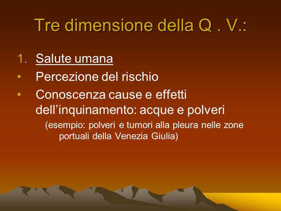 Tre dimensione della Q. V.: 1.Salute umana Percezione del rischio Conoscenza cause e effetti dellinquinamento: acque e polveri (esempio: polveri e tum