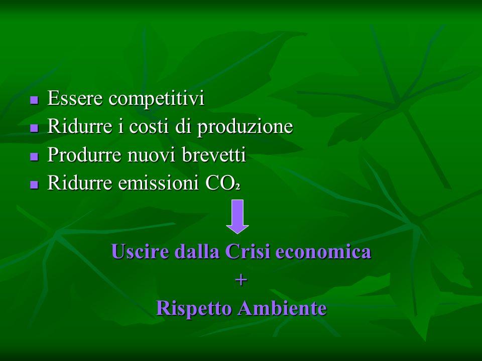Essere competitivi Essere competitivi Ridurre i costi di produzione Ridurre i costi di produzione Produrre nuovi brevetti Produrre nuovi brevetti Ridurre emissioni CO 2 Ridurre emissioni CO 2 Uscire dalla Crisi economica + Rispetto Ambiente