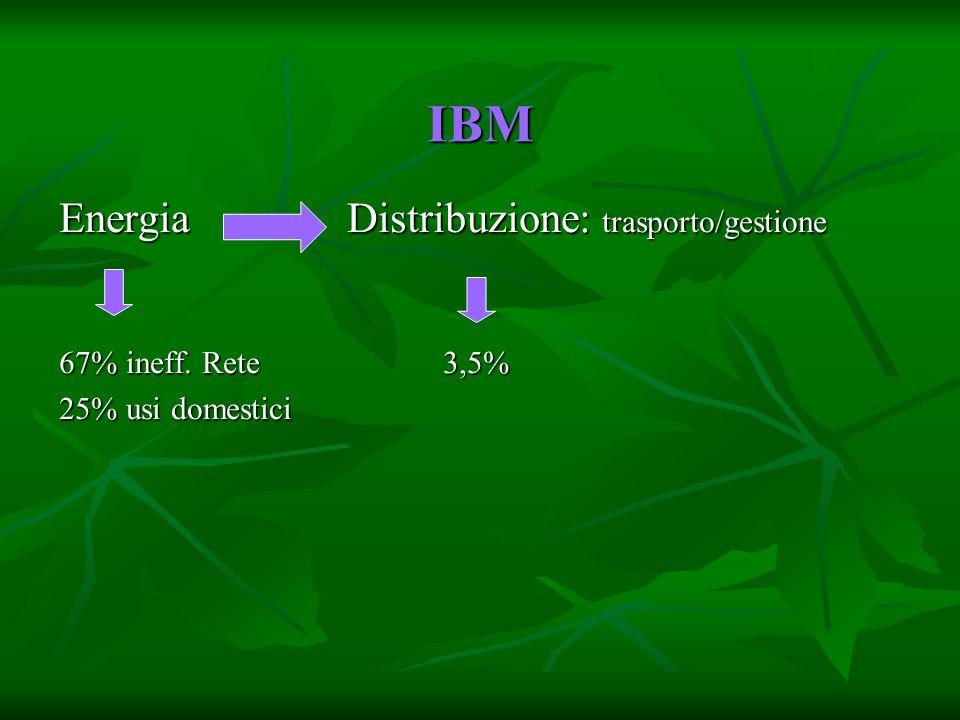 IBM EnergiaDistribuzione: trasporto/gestione 67% ineff. Rete3,5% 25% usi domestici