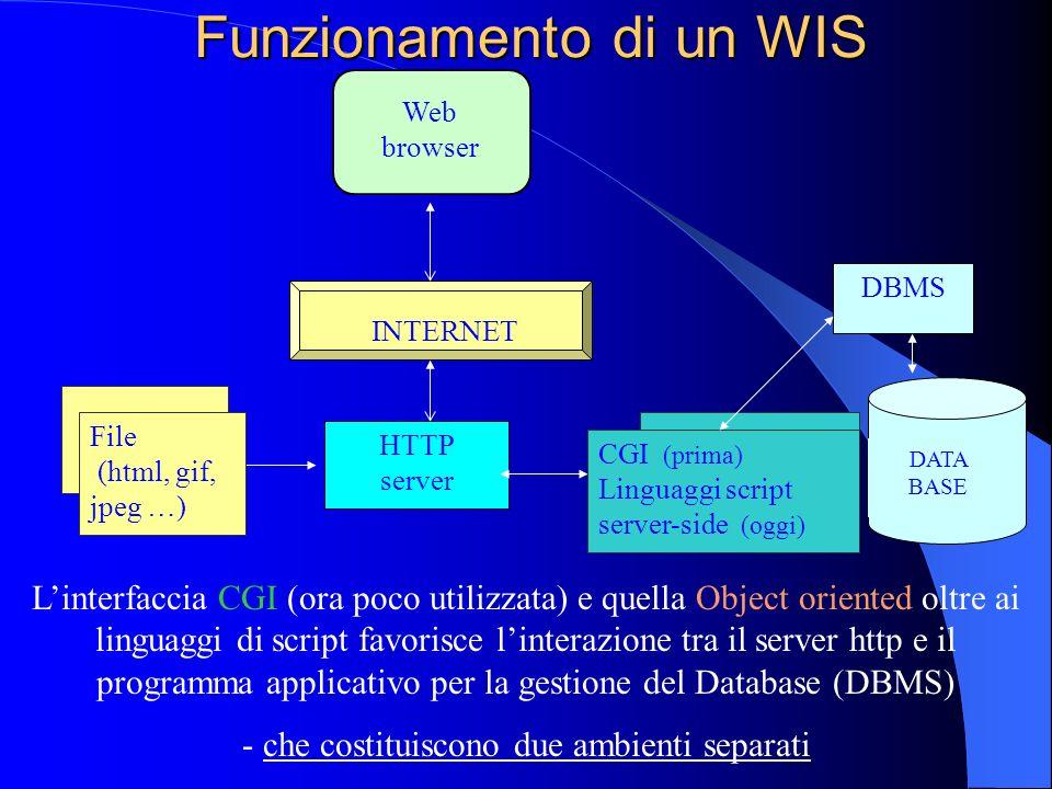 WIS -Web Information System- Attualmente maggior utilizzo: istituzioni pubbliche (raccolta, generazione e distribuzione di enormi quantità di informaz