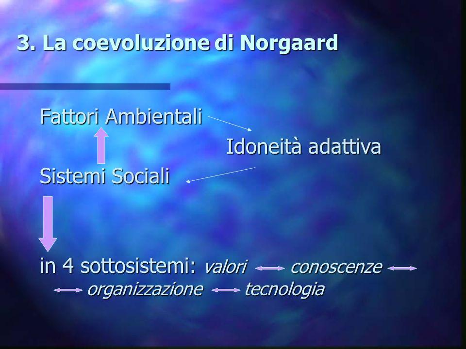 3. La coevoluzione di Norgaard 3. La coevoluzione di Norgaard Fattori Ambientali Idoneità adattiva Idoneità adattiva Sistemi Sociali in 4 sottosistemi