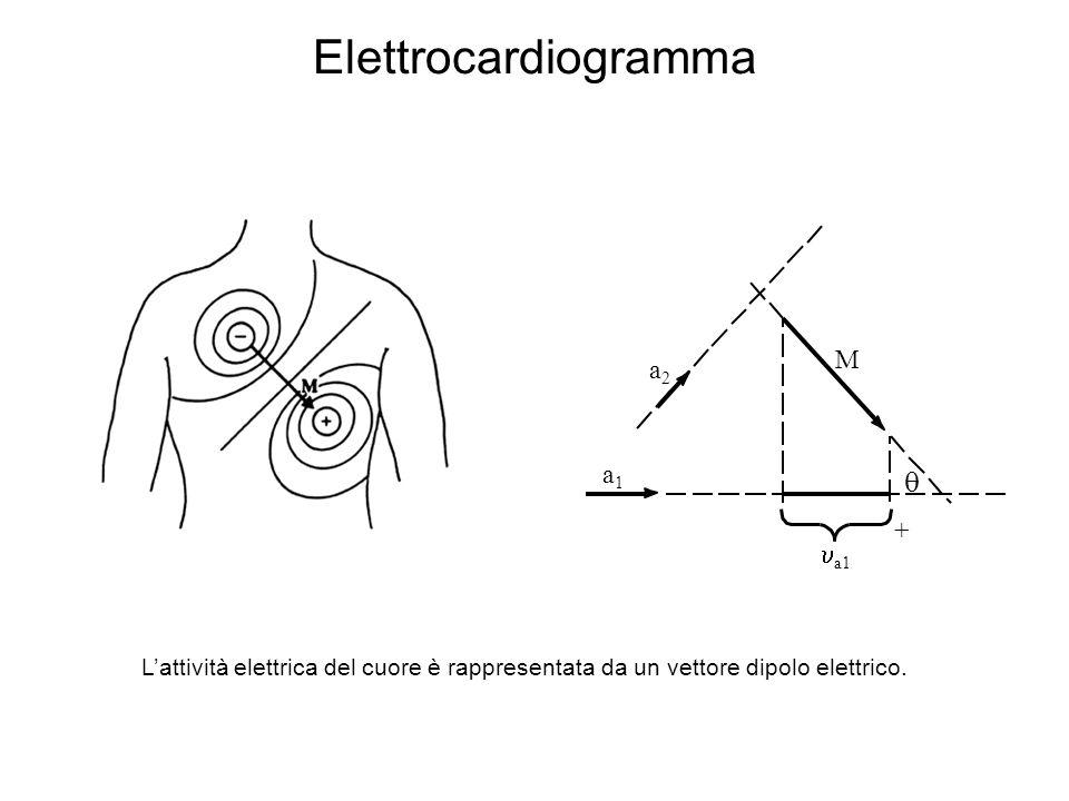 Elettrocardiogramma Lattività elettrica del cuore è rappresentata da un vettore dipolo elettrico. a1 a2a2 a1a1 M +