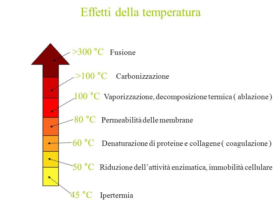 45 °C Ipertermia 50 °C Riduzione dellattività enzimatica, immobilità cellulare 60 °C Denaturazione di proteine e collagene ( coagulazione ) 80 °C Perm