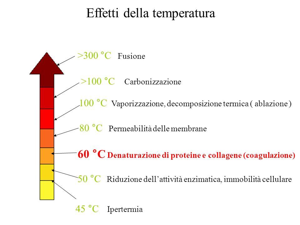 45 °C Ipertermia 50 °C Riduzione dellattività enzimatica, immobilità cellulare 60 °C Denaturazione di proteine e collagene (coagulazione) 80 °C Permea