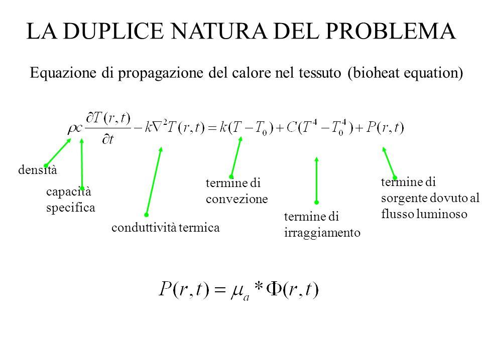 LA DUPLICE NATURA DEL PROBLEMA Equazione di propagazione del calore nel tessuto (bioheat equation) densità capacità specifica conduttività termica ter