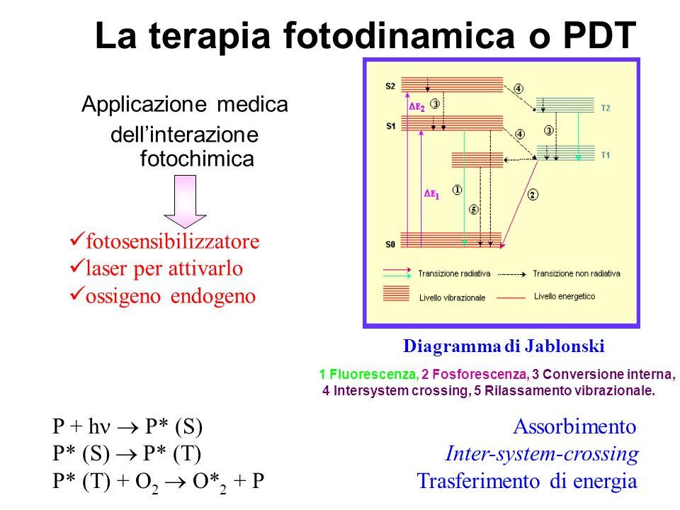 La terapia fotodinamica o PDT Applicazione medica dellinterazione fotochimica P + h P* (S) Assorbimento P* (S) P* (T) Inter-system-crossing P* (T) + O