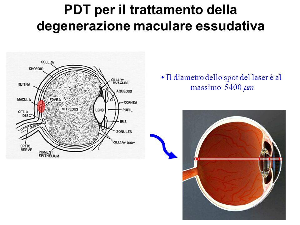 Il diametro dello spot del laser è al massimo 5400 m PDT per il trattamento della degenerazione maculare essudativa