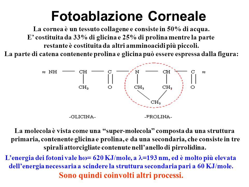 Fotoablazione Corneale La cornea è un tessuto collagene e consiste in 50% di acqua. E costituita da 33% di glicina e 25% di prolina mentre la parte re