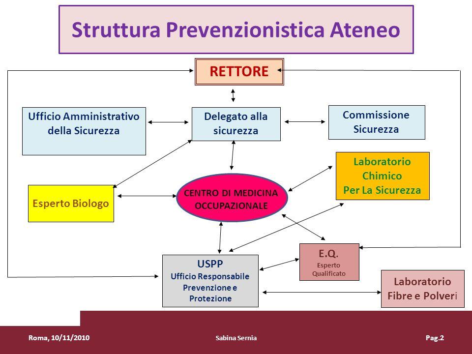 Struttura Prevenzionistica Ateneo RETTORE Commissione Sicurezza Delegato alla sicurezza Ufficio Amministrativo della Sicurezza Laboratorio Chimico Per