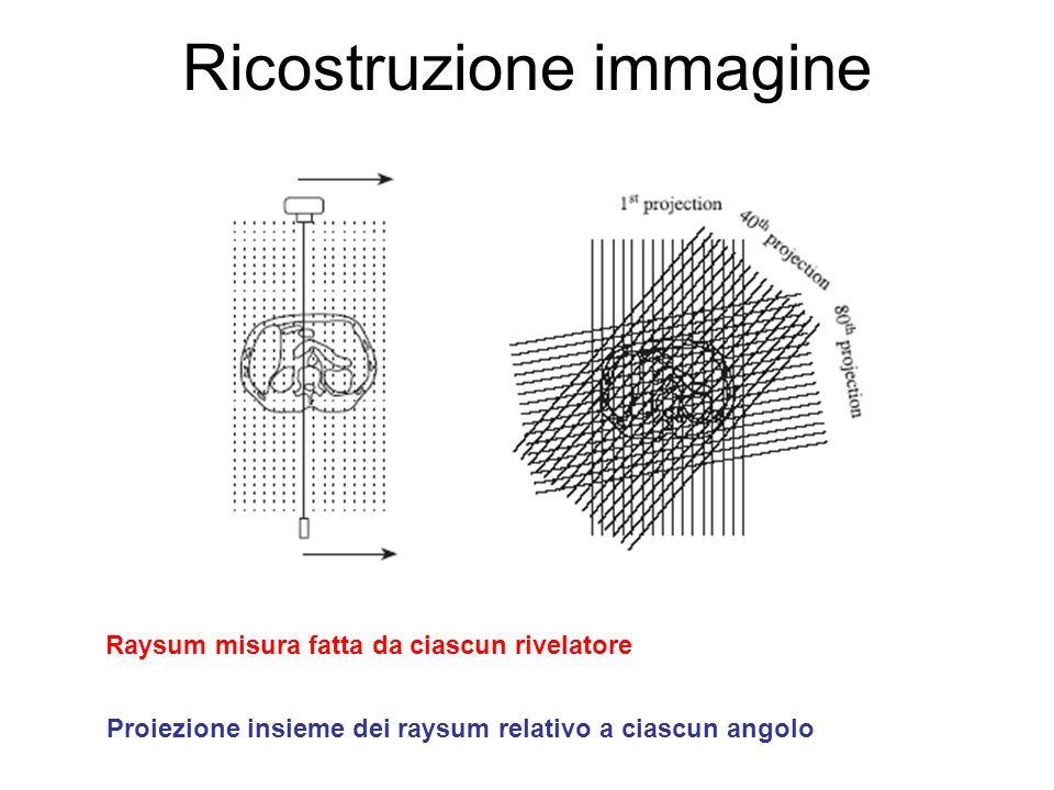 Ricostruzione immagine Raysum misura fatta da ciascun rivelatore Proiezione insieme dei raysum relativo a ciascun angolo