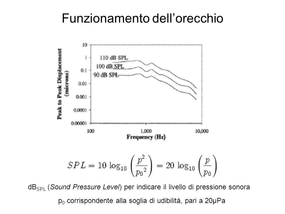p 0 corrispondente alla soglia di udibilità, pari a 20μPa dB SPL (Sound Pressure Level) per indicare il livello di pressione sonora Funzionamento dell