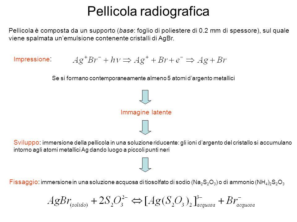 Pellicola radiografica Pellicola è composta da un supporto (base: foglio di poliestere di 0.2 mm di spessore), sul quale viene spalmata unemulsione contenente cristalli di AgBr.