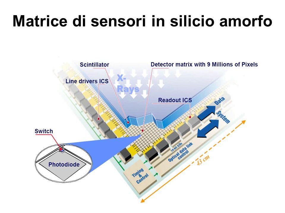 Matrice di sensori in silicio amorfo