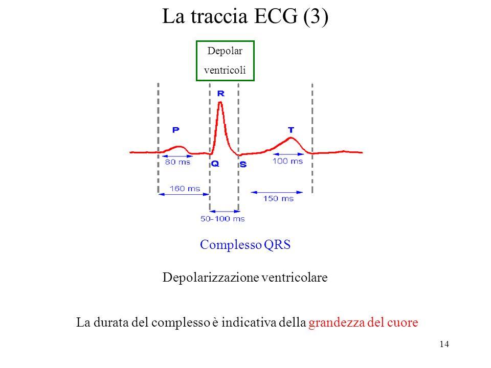14 La traccia ECG (3) La durata del complesso è indicativa della grandezza del cuore Complesso QRS Depolarizzazione ventricolare Depolar ventricoli