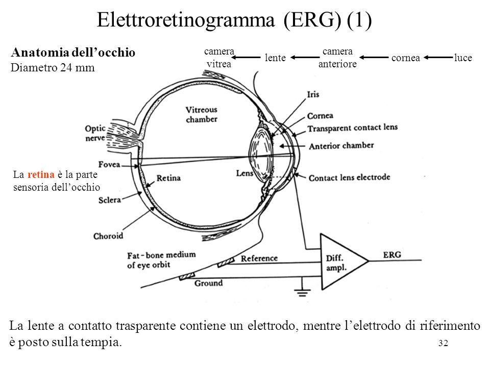 32 Elettroretinogramma (ERG) (1) La lente a contatto trasparente contiene un elettrodo, mentre lelettrodo di riferimento è posto sulla tempia. Anatomi