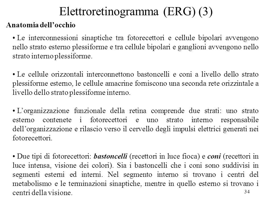 34 Elettroretinogramma (ERG) (3) Anatomia dellocchio Le interconnessioni sinaptiche tra fotorecettori e cellule bipolari avvengono nello strato estern