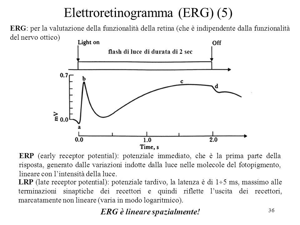 36 Elettroretinogramma (ERG) (5) ERP (early receptor potential): potenziale immediato, che è la prima parte della risposta, generato dalle variazioni