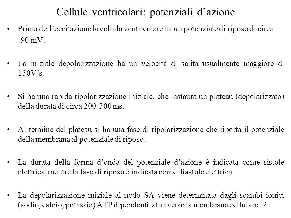 9 Prima delleccitazione la cellula ventricolare ha un potenziale di riposo di circa -90 mV. La iniziale depolarizzazione ha un velocità di salita usua