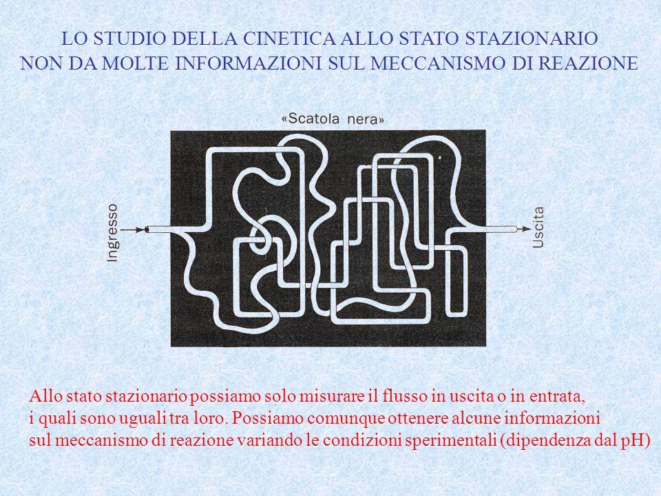 LO STUDIO DELLA CINETICA ALLO STATO STAZIONARIO NON DA MOLTE INFORMAZIONI SUL MECCANISMO DI REAZIONE Allo stato stazionario possiamo solo misurare il