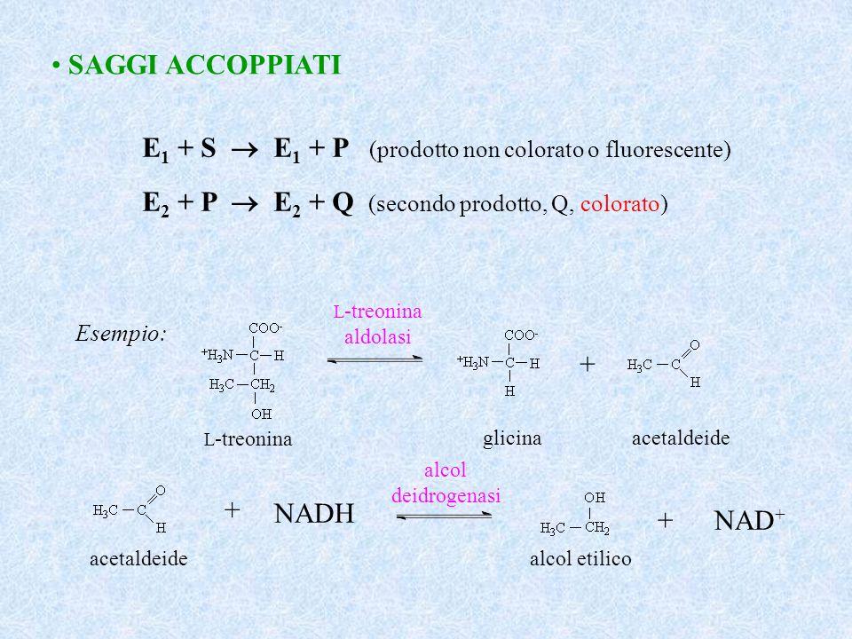 SAGGI ACCOPPIATI E 1 + S E 1 + P (prodotto non colorato o fluorescente) E 2 + P E 2 + Q (secondo prodotto, Q, colorato) Esempio: + L -treonina glicina