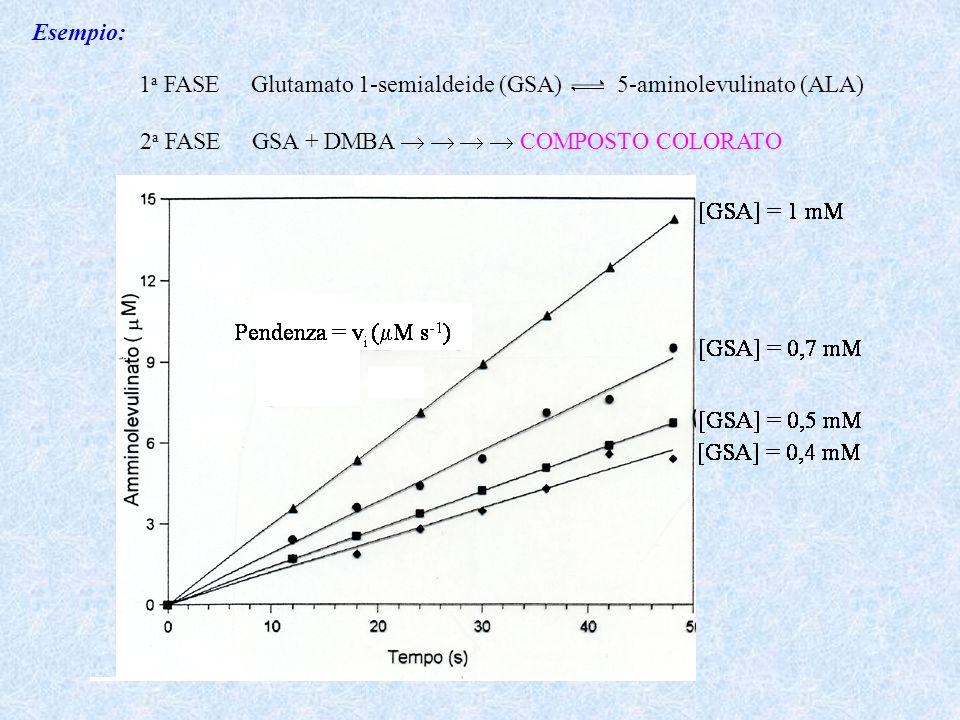 Esempio: 1 a FASE Glutamato 1-semialdeide (GSA) 5-aminolevulinato (ALA) 2 a FASE GSA + DMBA COMPOSTO COLORATO