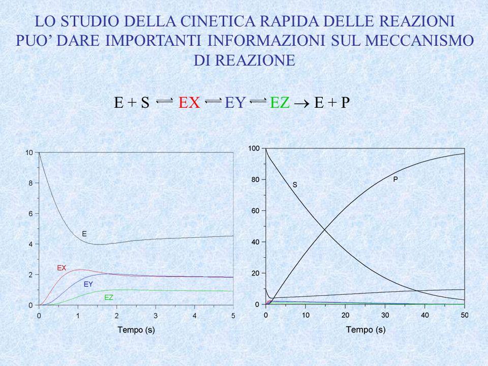 E + S EX EY EZ E + P LO STUDIO DELLA CINETICA RAPIDA DELLE REAZIONI PUO DARE IMPORTANTI INFORMAZIONI SUL MECCANISMO DI REAZIONE