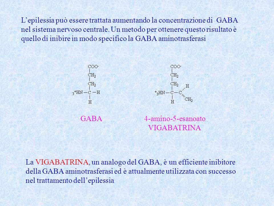 Lepilessia può essere trattata aumentando la concentrazione di GABA nel sistema nervoso centrale. Un metodo per ottenere questo risultato è quello di