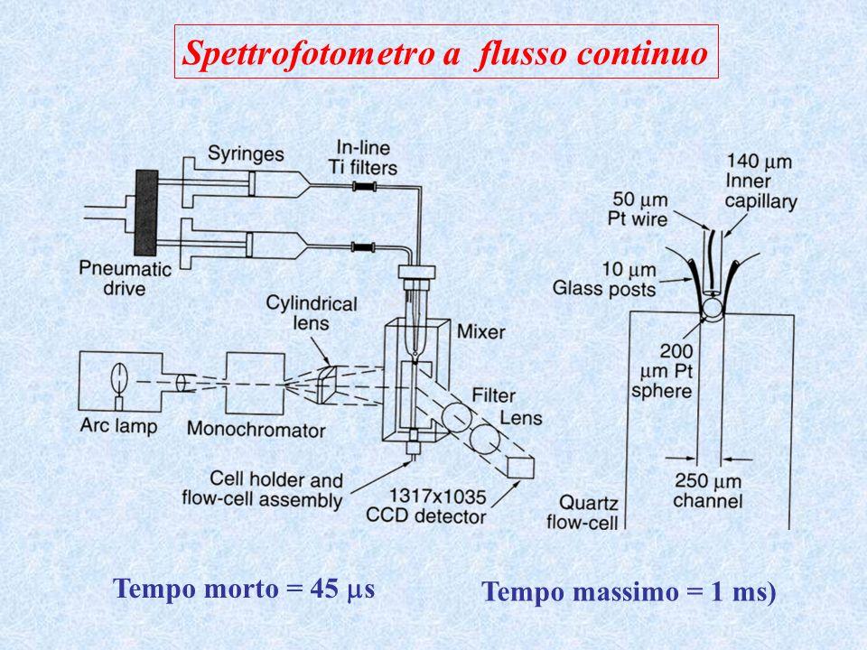 Spettrofotometro a flusso continuo Tempo morto = 45 s Tempo massimo = 1 ms)