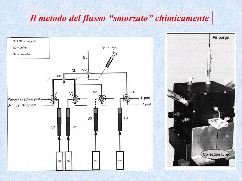 Metodi radioisotopici Si basano sullutilizzo di forme radiomarcate di un substrato Sono metodi molto sensibili ma limitati alle applicazioni in cui è possibile separare facilmente i substrati dai prodotti Esempio: misura dellattività di unaminotrasferasi + + 1 a FASE 2 a FASE (separazione cromatografica e conteggio della radiattività) Miscela di reazione colonna cromatografica a scambio anionico lavaggio Conteggio radiattività eluizione aminoacidichetoacidi