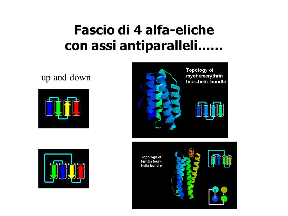 Fascio di 4 alfa-eliche con assi antiparalleli…… up and down